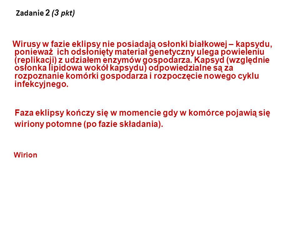 Zadanie 2 (3 pkt)