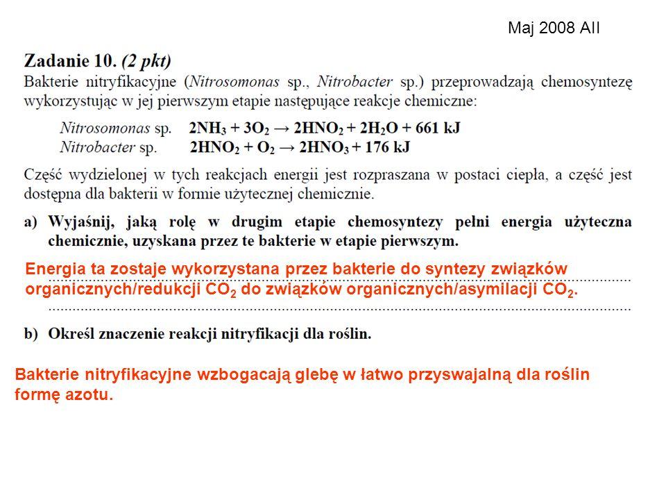 Maj 2008 AII Energia ta zostaje wykorzystana przez bakterie do syntezy związków. organicznych/redukcji CO2 do związków organicznych/asymilacji CO2.