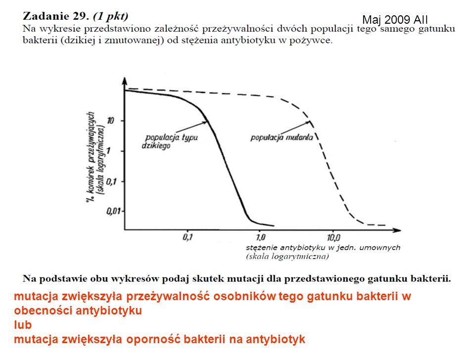 Maj 2009 AII mutacja zwiększyła przeżywalność osobników tego gatunku bakterii w obecności antybiotyku.