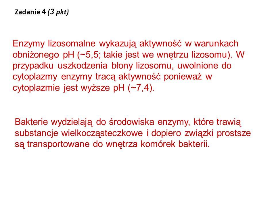 Zadanie 4 (3 pkt)