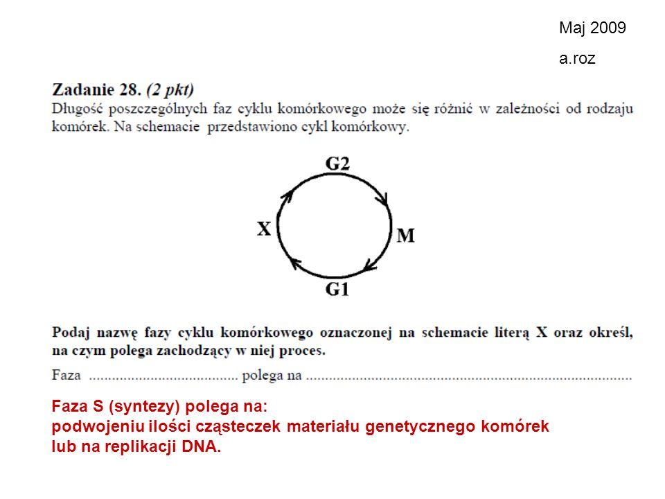 Maj 2009 a.roz. Faza S (syntezy) polega na: podwojeniu ilości cząsteczek materiału genetycznego komórek.