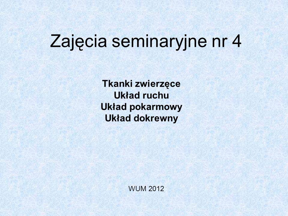 Zajęcia seminaryjne nr 4