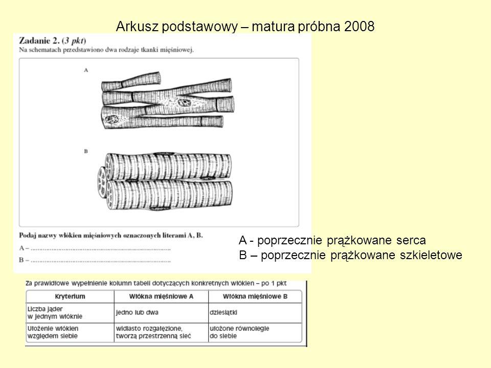 Arkusz podstawowy – matura próbna 2008
