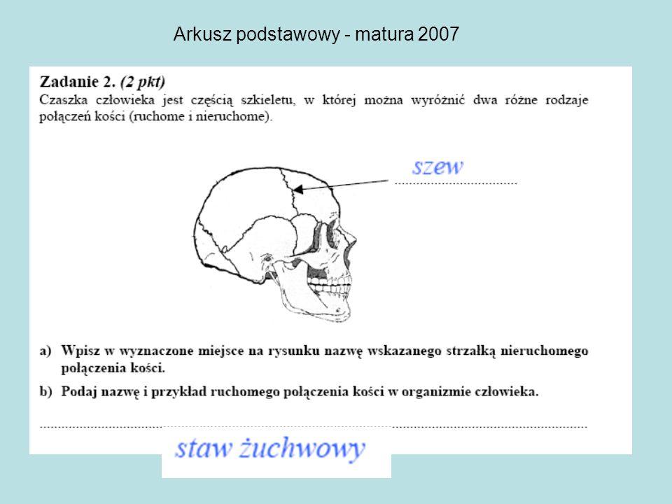 Arkusz podstawowy - matura 2007