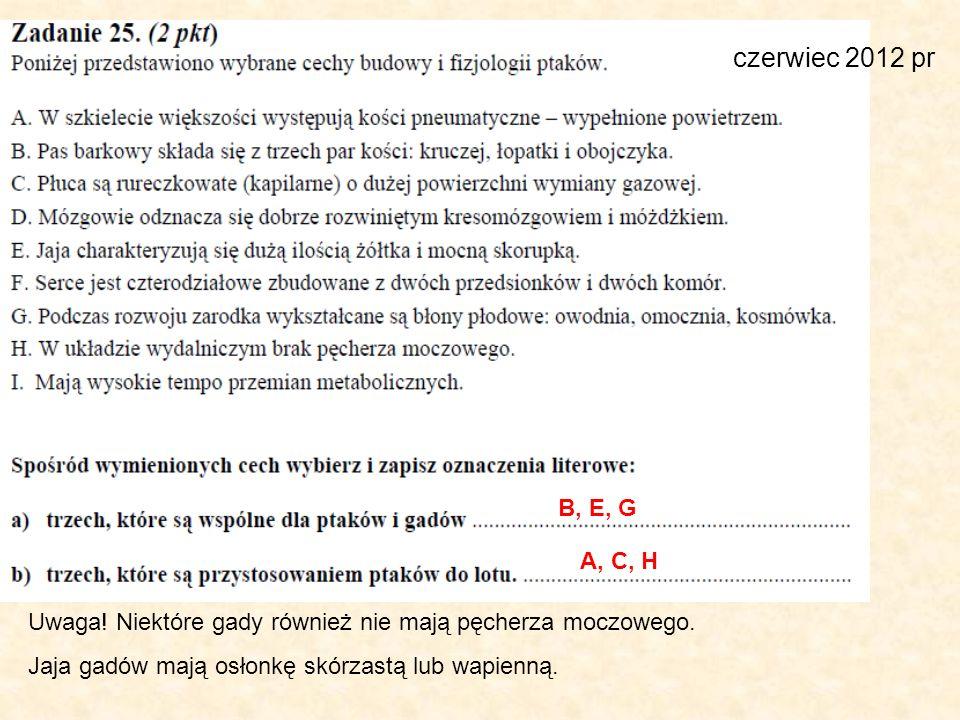 czerwiec 2012 pr B, E, G. A, C, H. Uwaga. Niektóre gady również nie mają pęcherza moczowego.