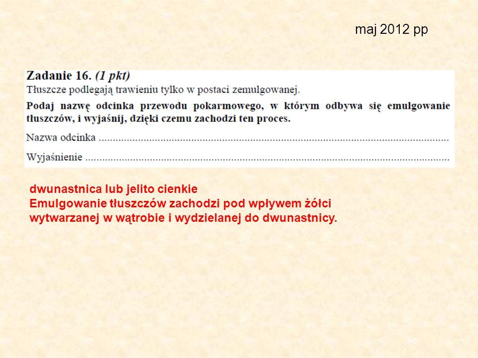 maj 2012 pp dwunastnica lub jelito cienkie