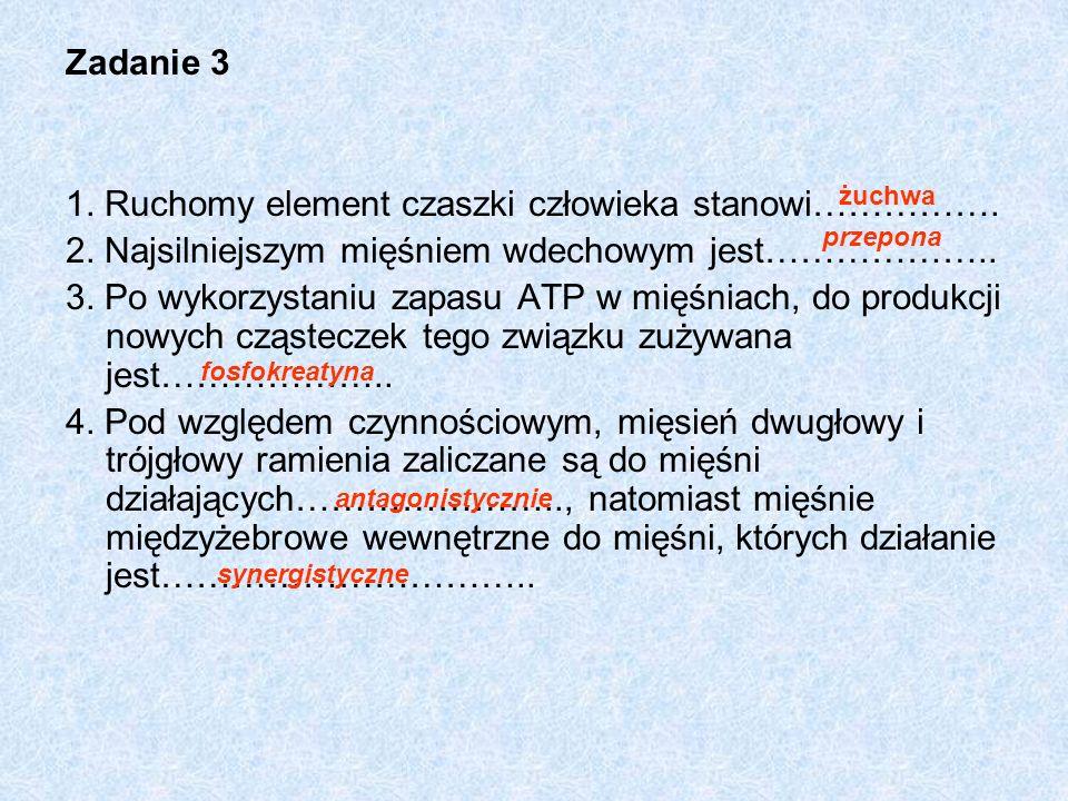 1. Ruchomy element czaszki człowieka stanowi…………….