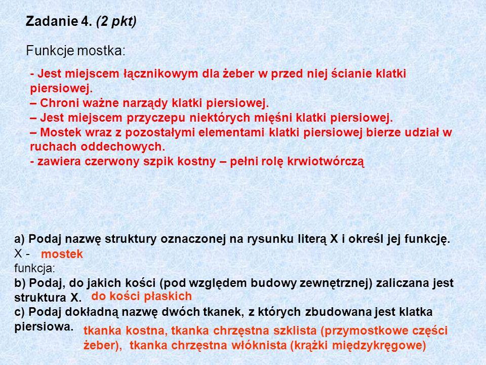 Zadanie 4. (2 pkt) Funkcje mostka: