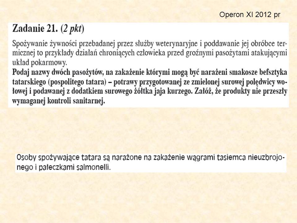 Operon XI 2012 pr