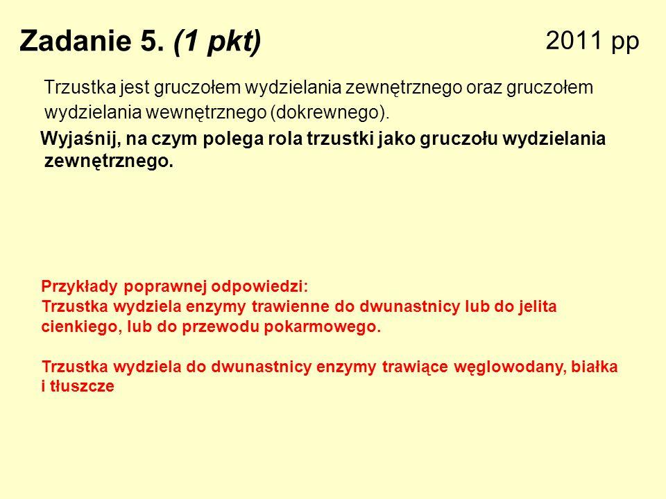 2011 pp Zadanie 5. (1 pkt) Trzustka jest gruczołem wydzielania zewnętrznego oraz gruczołem wydzielania wewnętrznego (dokrewnego).