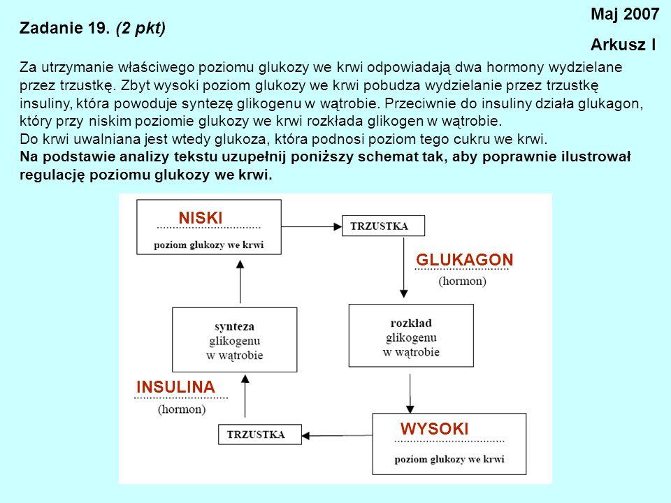 Maj 2007 Arkusz I Zadanie 19. (2 pkt) NISKI GLUKAGON INSULINA WYSOKI