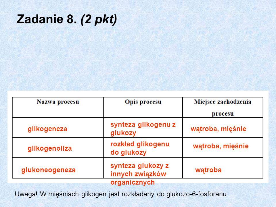 Zadanie 8. (2 pkt) synteza glikogenu z glukozy glikogeneza