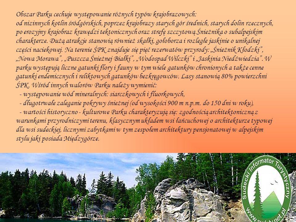 Obszar Parku cechuje występowanie różnych typów krajobrazowych: od nizinnych kotlin śródgórskich, poprzez krajobrazy starych gór średnich, starych dolin rzecznych, po erozyjny krajobraz krawędzi tektonicznych oraz strefę szczytową Śnieżnika o subalpejskim charakterze.