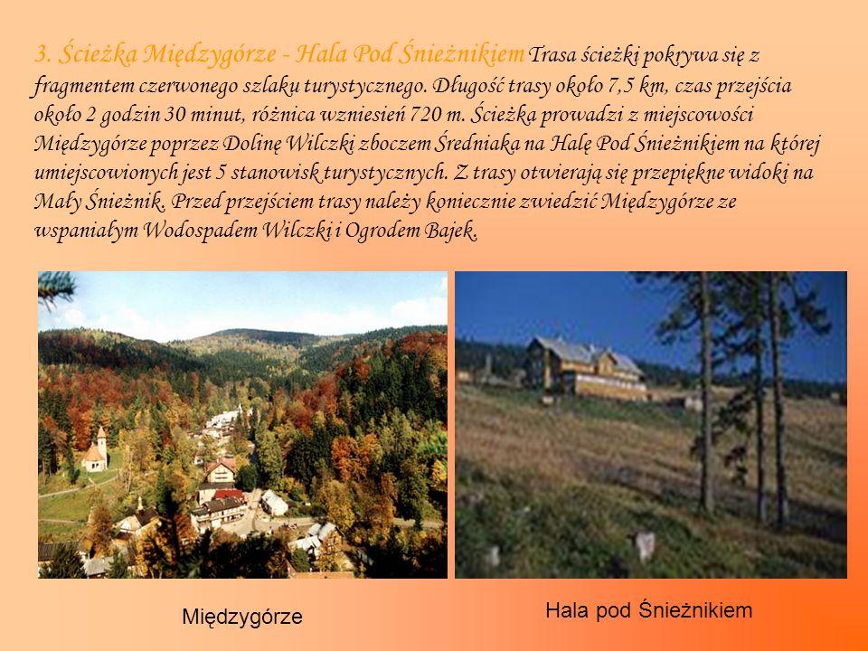 3. Ścieżka Międzygórze - Hala Pod Śnieżnikiem Trasa ścieżki pokrywa się z fragmentem czerwonego szlaku turystycznego. Długość trasy około 7,5 km, czas przejścia około 2 godzin 30 minut, różnica wzniesień 720 m. Ścieżka prowadzi z miejscowości Międzygórze poprzez Dolinę Wilczki zboczem Średniaka na Halę Pod Śnieżnikiem na której umiejscowionych jest 5 stanowisk turystycznych. Z trasy otwierają się przepiękne widoki na Mały Śnieżnik. Przed przejściem trasy należy koniecznie zwiedzić Międzygórze ze wspaniałym Wodospadem Wilczki i Ogrodem Bajek.