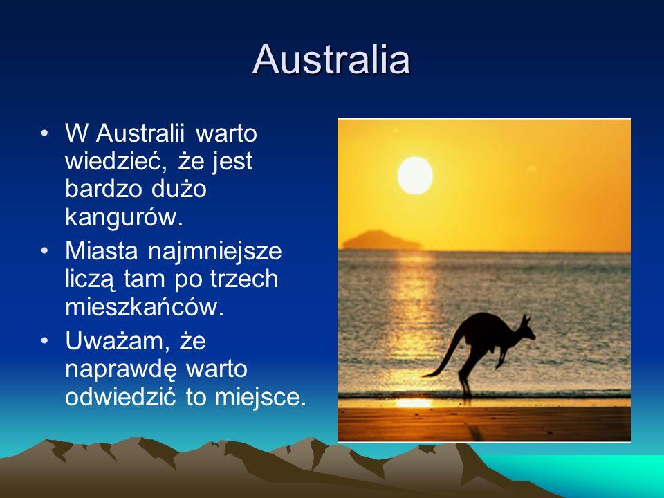 Australia W Australii warto wiedzieć, że jest bardzo dużo kangurów.