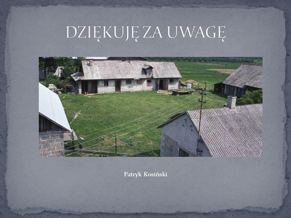 DZIĘKUJĘ ZA UWAGĘ Patryk Kosiński