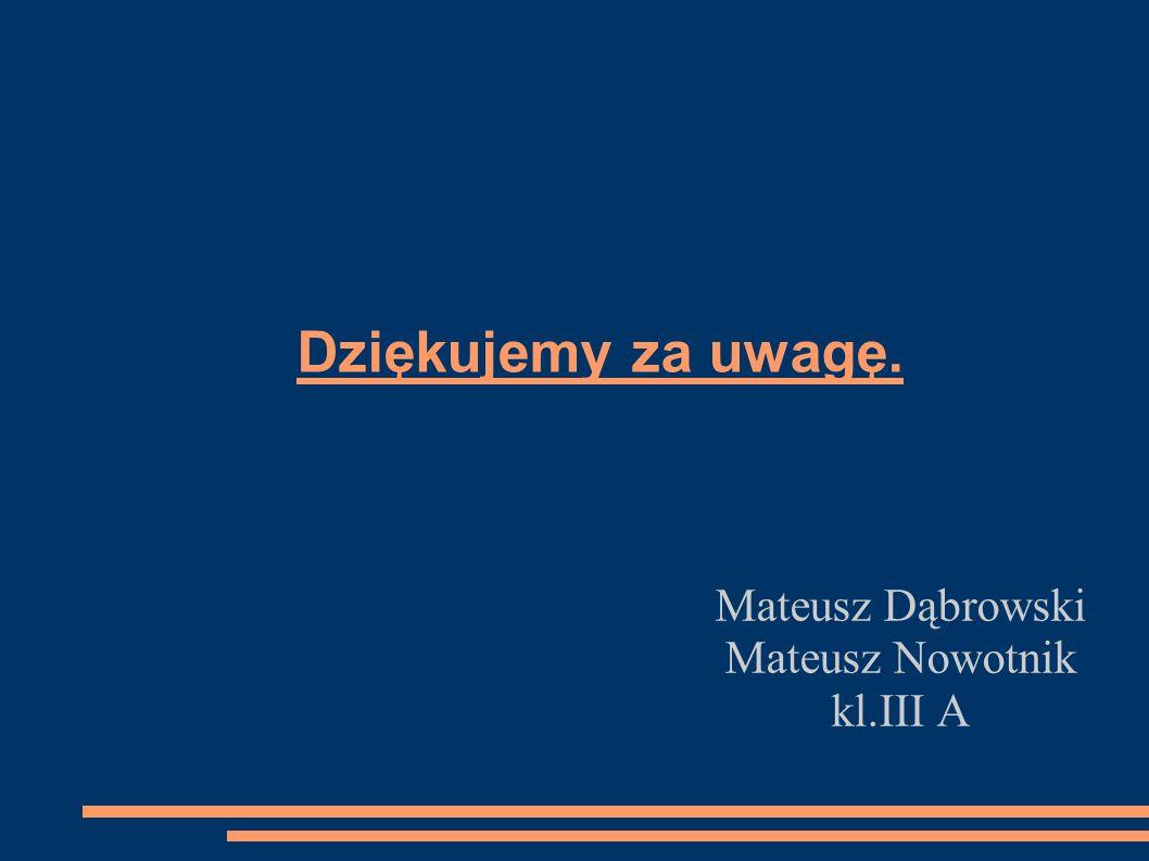Mateusz Dąbrowski Mateusz Nowotnik kl.III A