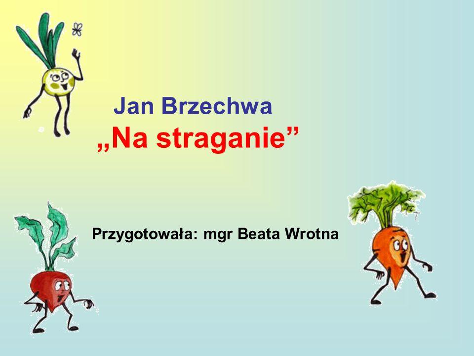 """Jan Brzechwa """"Na straganie"""