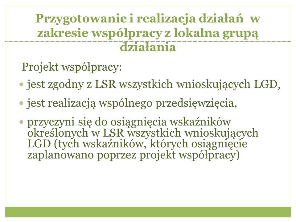 Przygotowanie i realizacja działań w zakresie współpracy z lokalna grupą działania