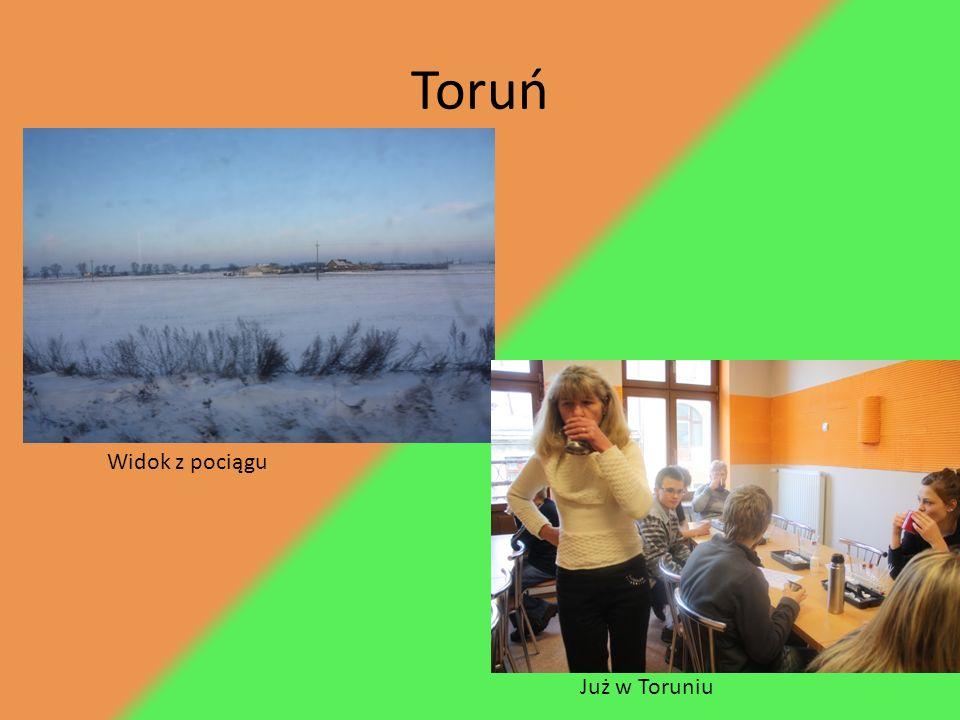 Toruń Widok z pociągu Już w Toruniu