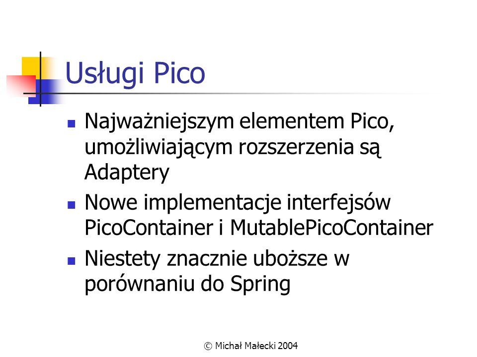 Usługi Pico Najważniejszym elementem Pico, umożliwiającym rozszerzenia są Adaptery.