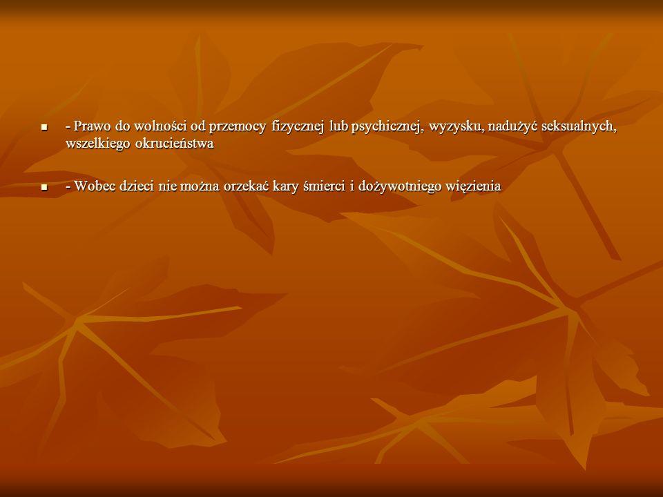 - Prawo do wolności od przemocy fizycznej lub psychicznej, wyzysku, nadużyć seksualnych, wszelkiego okrucieństwa