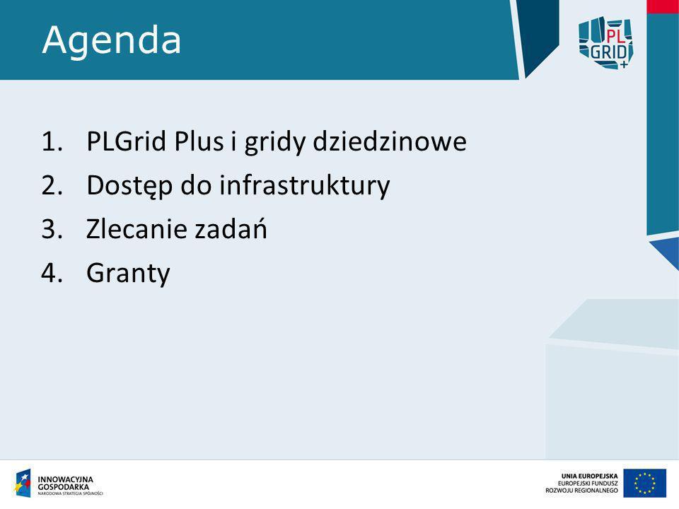 Agenda PLGrid Plus i gridy dziedzinowe Dostęp do infrastruktury
