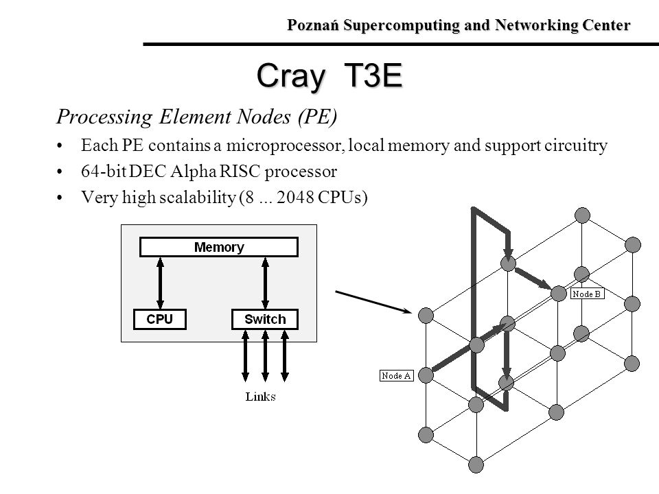 Cray T3E Processing Element Nodes (PE)