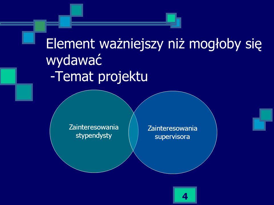 Element ważniejszy niż mogłoby się wydawać -Temat projektu