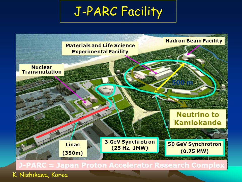 Materials and Life Science Experimental Facility Nuclear Transmutation
