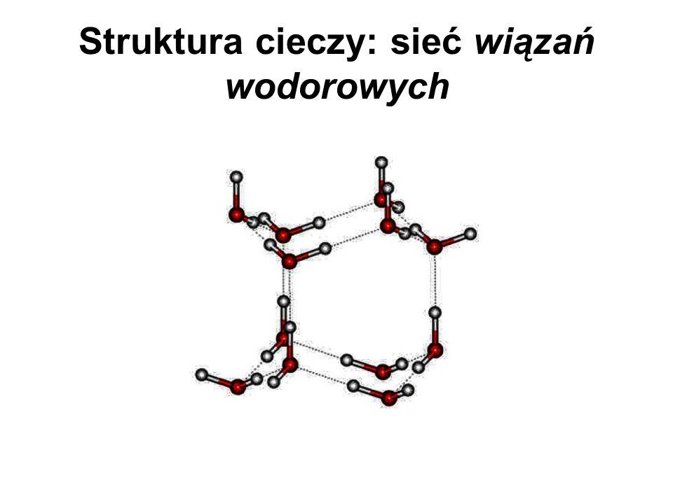 Struktura cieczy: sieć wiązań wodorowych