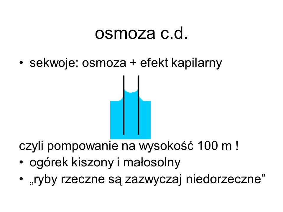 osmoza c.d. sekwoje: osmoza + efekt kapilarny