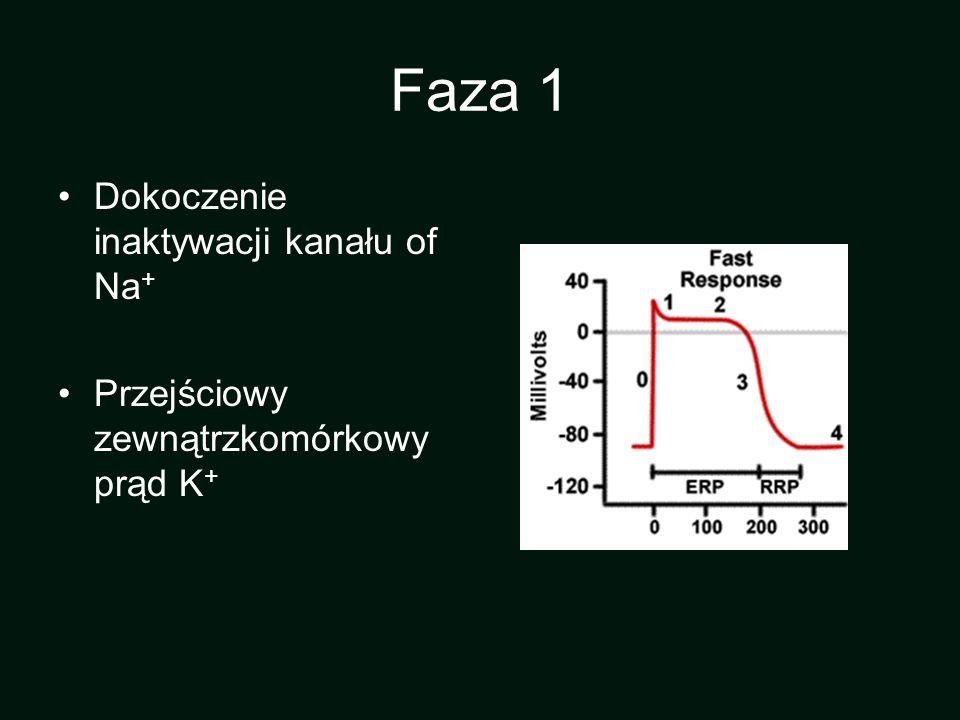 Faza 1 Dokoczenie inaktywacji kanału of Na+