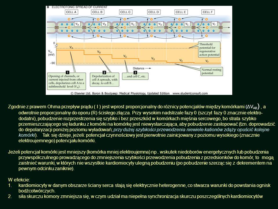 Zgodnie z prawem Ohma przepływ prądu ( I ) jest wprost proporcjonalny do różnicy potencjałów między komórkami (ΔVAB) , a odwrotnie proporcjonalny do oporu (R) ścisłego złącza. Przy wysokim nadstrzale fazy 0 (szczyt fazy 0 znacznie elektro-dodatni), pobudzenie rozprzestrzenia się szybko i bez przeszkód w komórkach mięśnia sercowego, bo strata szybko przemieszczającego się ładunku z komórki na komórkę jest niewystarczająca, aby pobudzenie zastopować (tzn. doprowadzić do depolaryzacji poniżej poziomu wyładowań; przy dużej szybkości przewodzenia niewiele kationów zdąży opuścić kolejne komórki). Tak się dzieje, jeżeli: potencjał czynnościowy jest pierwotnie zainicjowany z poziomu wysokiego (znacznie elektroujemnego) potencjału komórki.