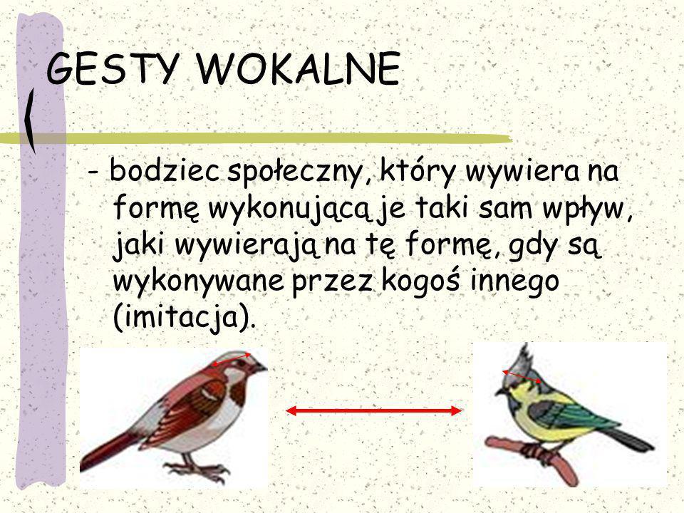 GESTY WOKALNE