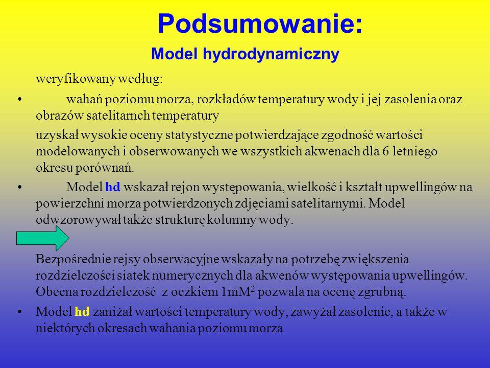 Model hydrodynamiczny