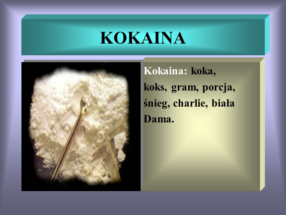 KOKAINA Kokaina: koka, koks, gram, porcja, śnieg, charlie, biała Dama.