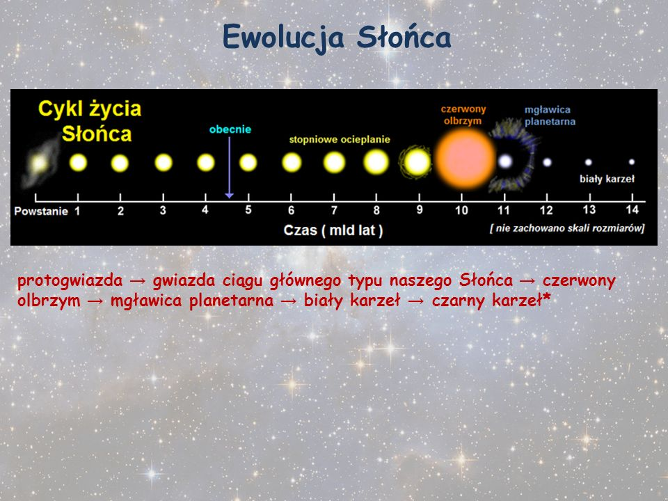 Ewolucja Słońca protogwiazda → gwiazda ciągu głównego typu naszego Słońca → czerwony olbrzym → mgławica planetarna → biały karzeł → czarny karzeł*