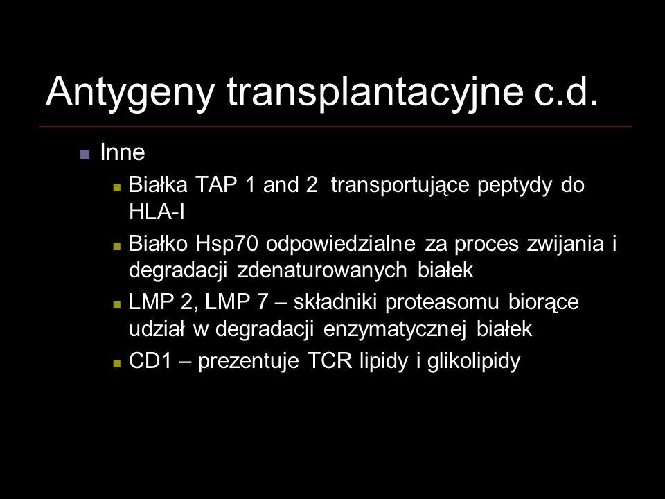 Antygeny transplantacyjne c.d.