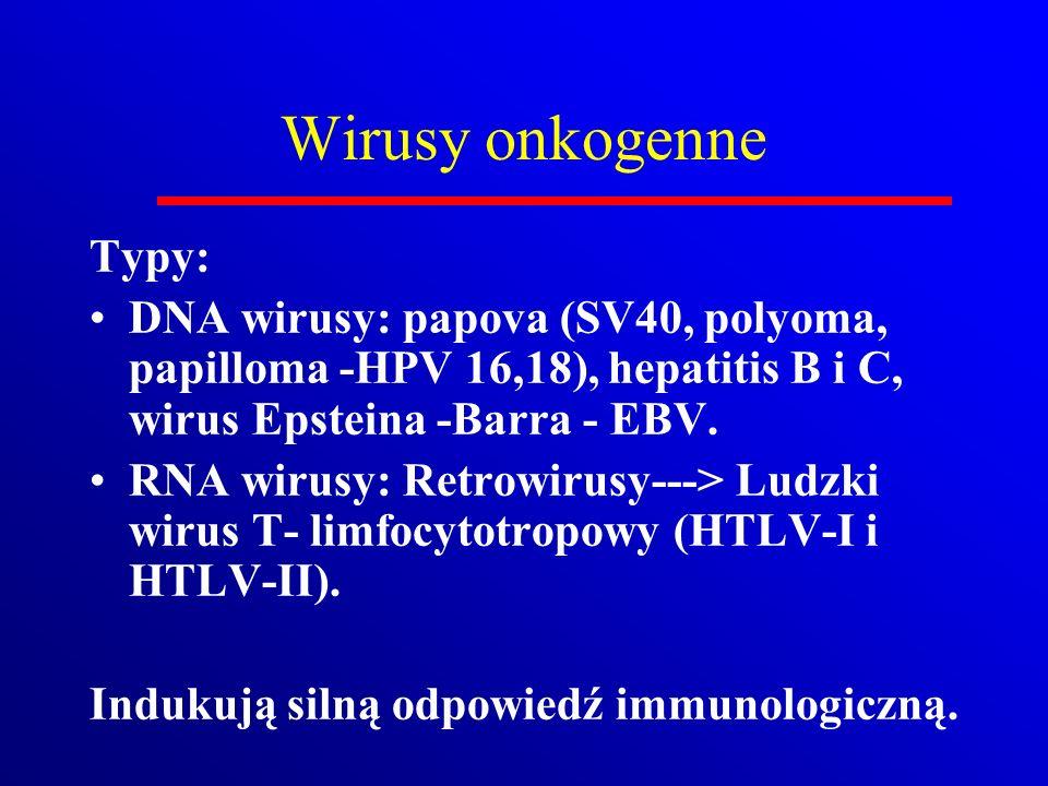 Wirusy onkogenne Typy: