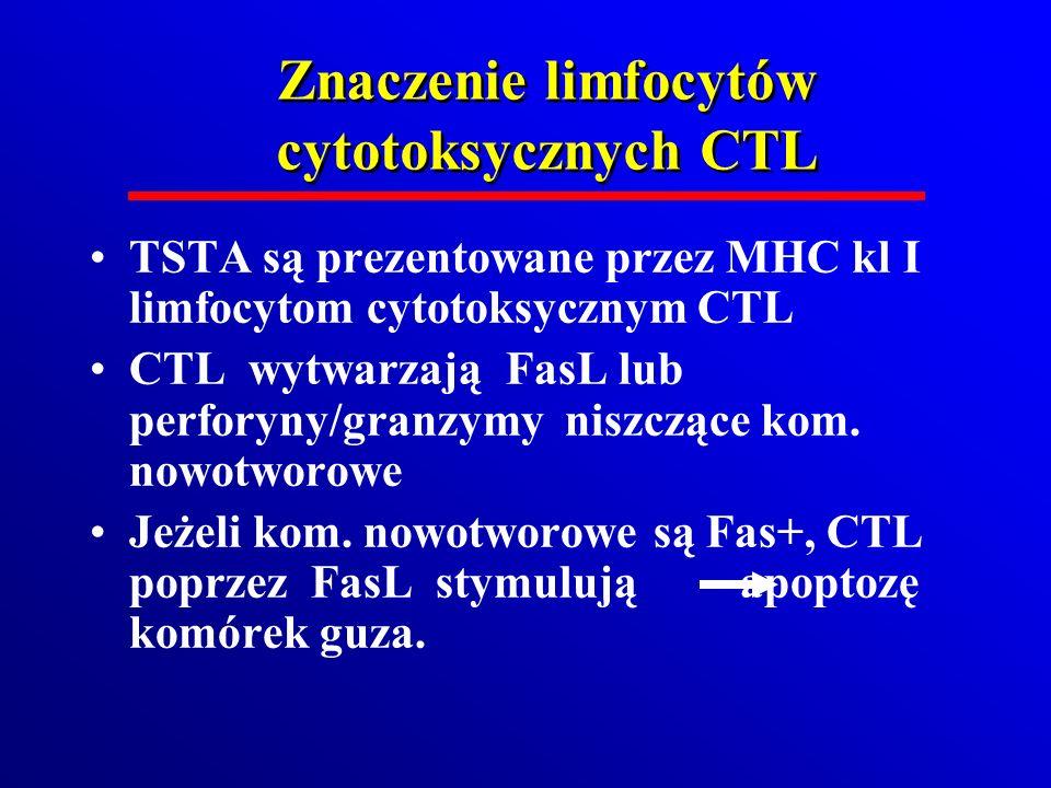 Znaczenie limfocytów cytotoksycznych CTL