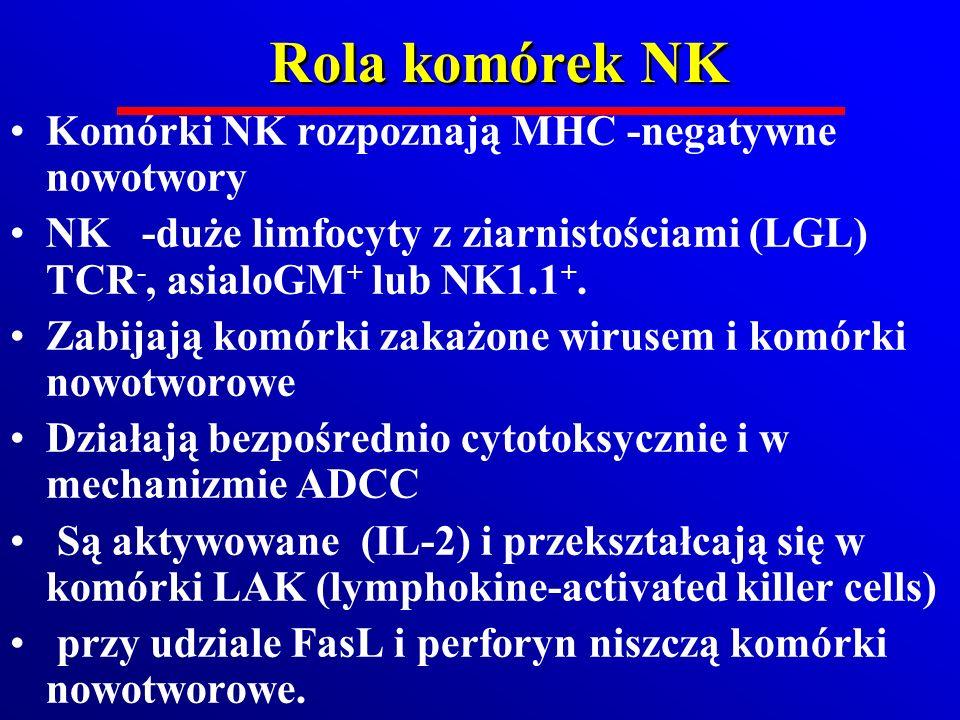 Rola komórek NK Komórki NK rozpoznają MHC -negatywne nowotwory