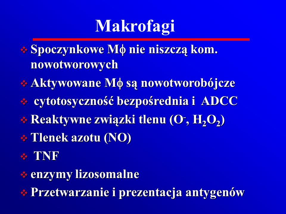Makrofagi Spoczynkowe Mf nie niszczą kom. nowotworowych