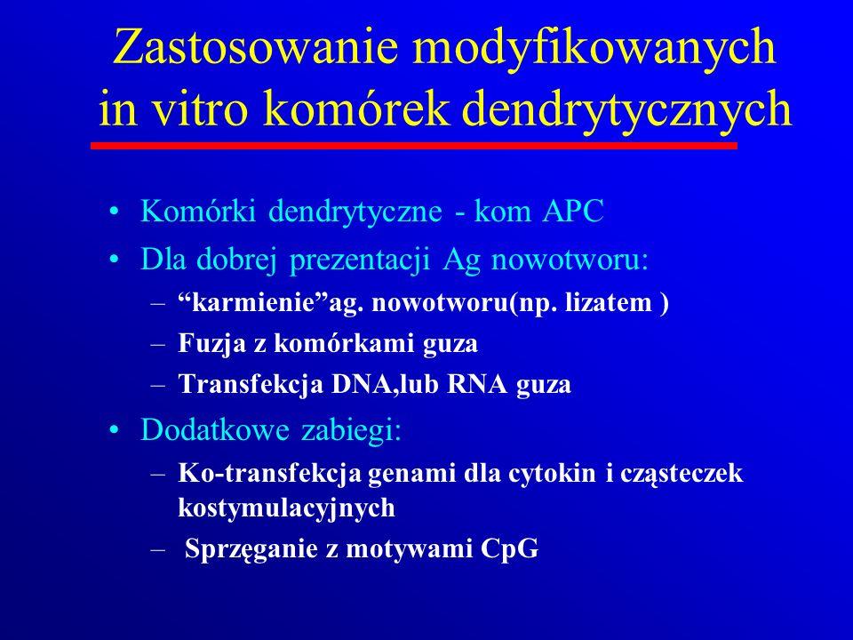 Zastosowanie modyfikowanych in vitro komórek dendrytycznych