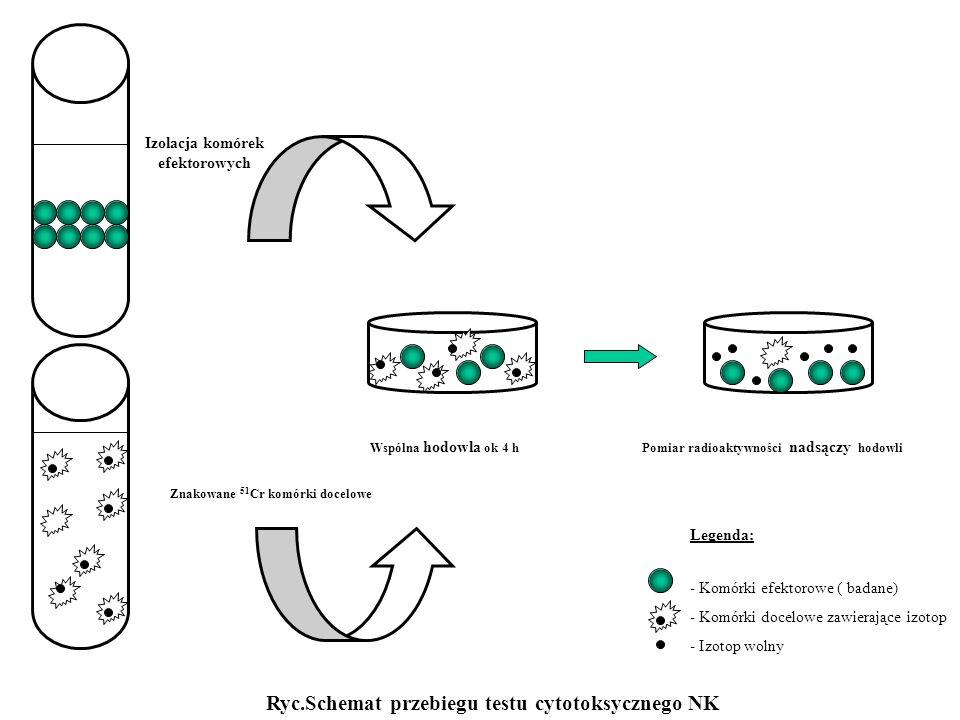 Ryc.Schemat przebiegu testu cytotoksycznego NK