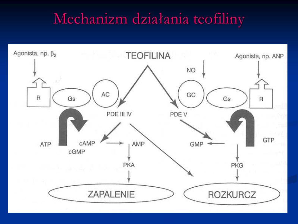 Mechanizm działania teofiliny