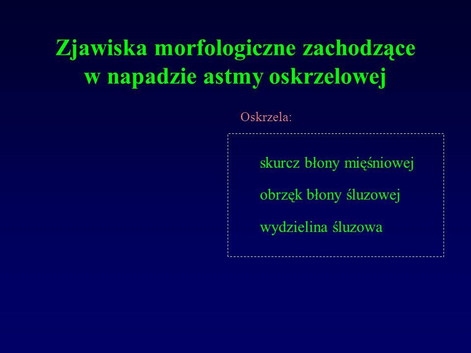 Zjawiska morfologiczne zachodzące w napadzie astmy oskrzelowej