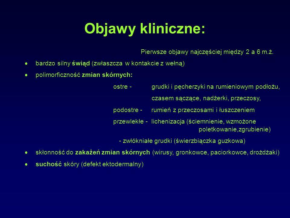 Objawy kliniczne: Pierwsze objawy najczęściej między 2 a 6 m.ż.