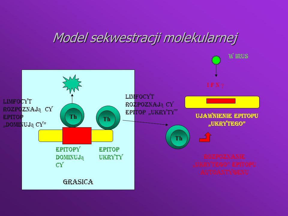 Model sekwestracji molekularnej