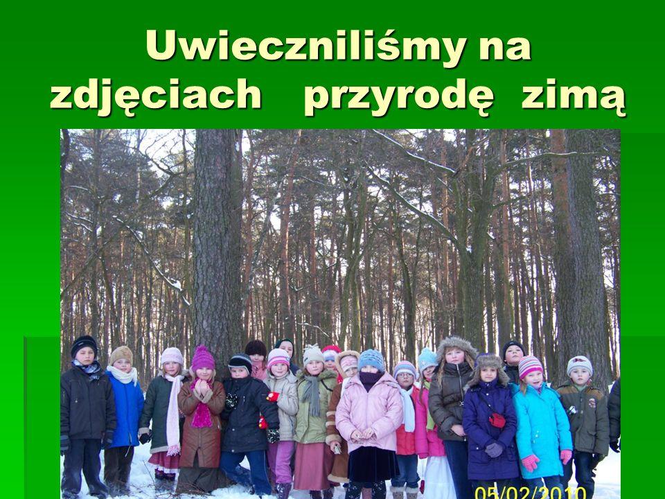 Uwieczniliśmy na zdjęciach przyrodę zimą